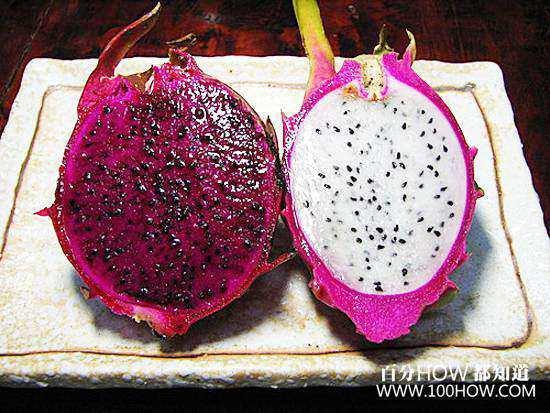 火龙果盆栽在家怎么种(图文教程)