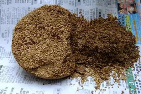 虎尾兰和虎皮兰区别,怎么种植的好