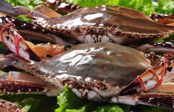 蒸螃蟹需要多长时间 清蒸大螃蟹的家常做法教程