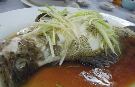 老鼠鱼怎么做好吃 老鼠鱼的做法教程