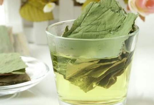 荷叶减肥茶有什么功效和作用以及禁忌