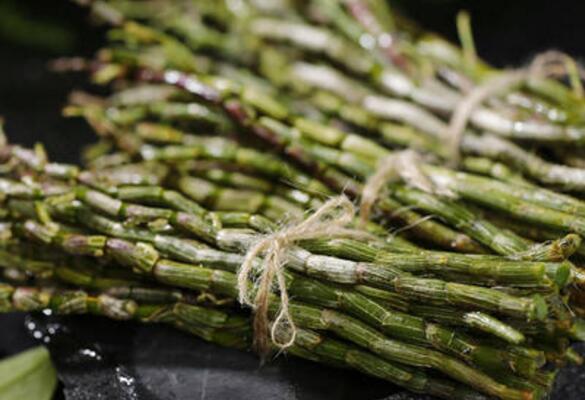 石斛有什么功效和作用以及禁忌 石斛的最佳吃法