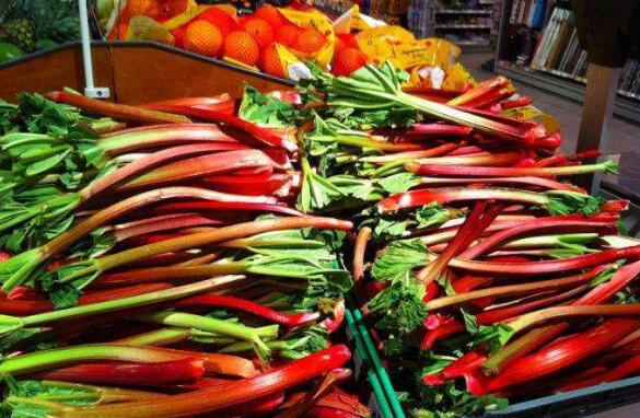 食用大黄菜怎么吃 蔬菜食用大黄的作用和功效