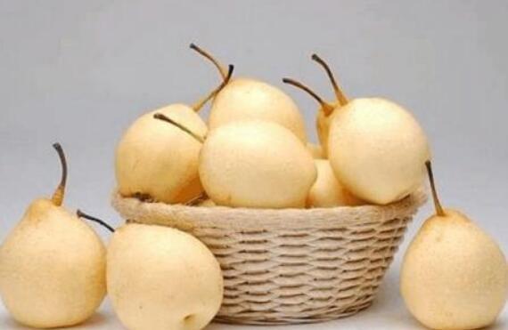 水晶梨有什么功效和作用 吃水晶梨的好处
