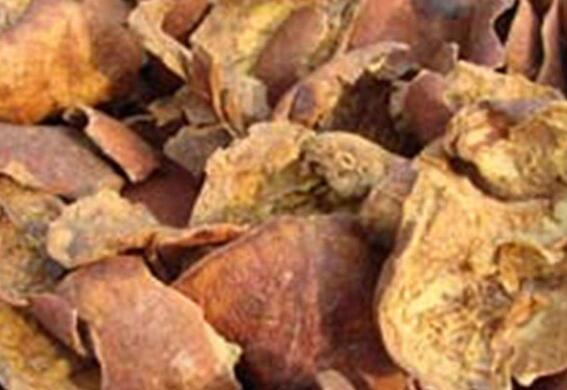 石榴皮有什么功效和作用以及药用价值