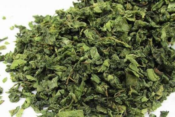 酸枣叶茶有什么功效和作用 喝酸枣叶茶的好处