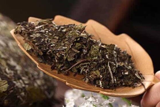 老白茶怎么储存 老白茶的储存方法