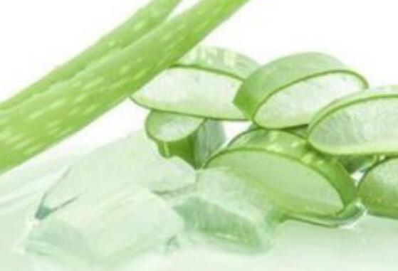 芦荟胶怎么用 芦荟胶的正确用法