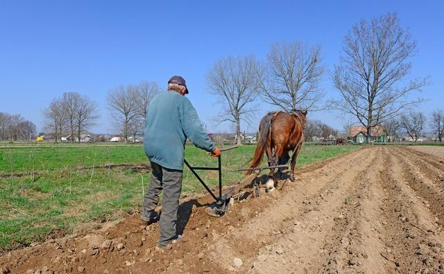 降低农民落户城市门槛,农民仍不愿进城落户,原因何在?