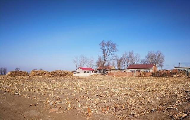 有些地方大片农田耕地丢荒,它的反面是什么,说明了什么问题呢?