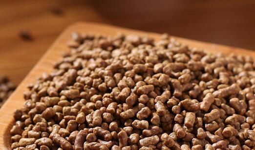 黑苦荞米的正确吃法 黑苦荞米怎么吃