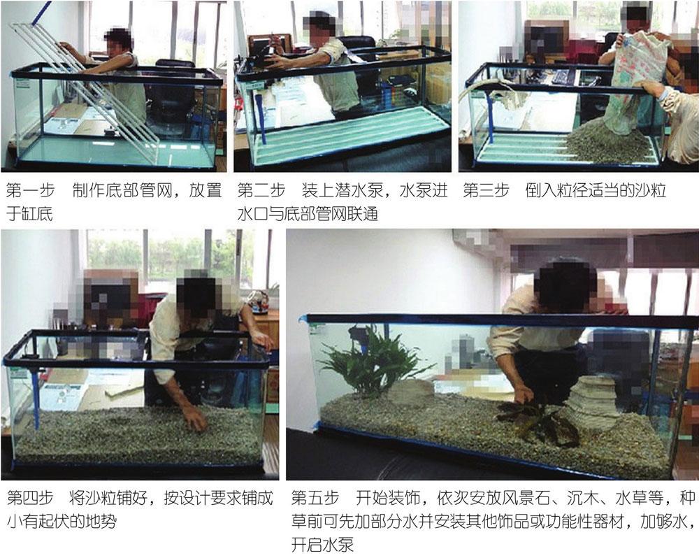 二、金鱼家养技术