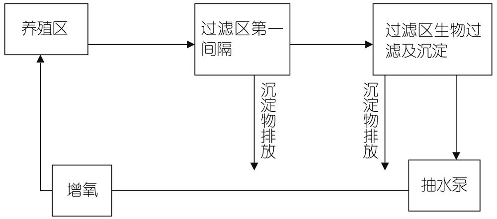 三、金鱼的生产技术